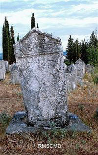 Image of ancient stecci of Bosnian heritage in Radimlje Cemetary photograph by Colette Dowell