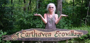 Permaculture Design homes Colette Dowell works with Earth  Haven Permaculture Community in Asheville North Carolina since Paul Caron and Val initially constructed in 1994
