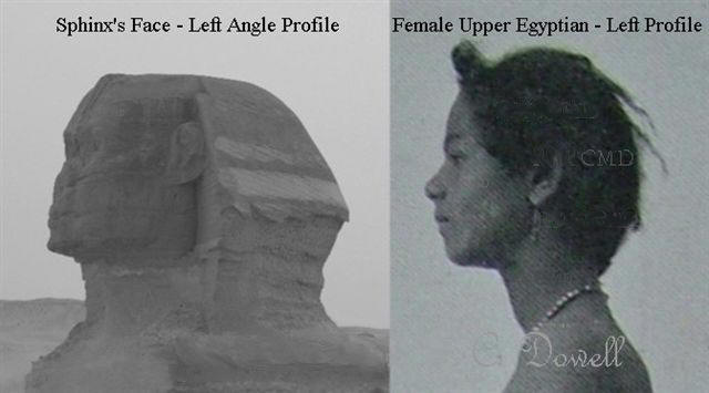 Image of Sphinx face left profile Upper Egyptian Female left profile  Ancient Egypt Sphinx article missing part of head