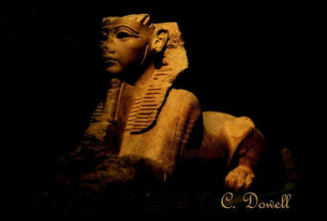 Image of Sphinx statue ancient Egyotian art Luxor Museum photograph by Colette Dowell