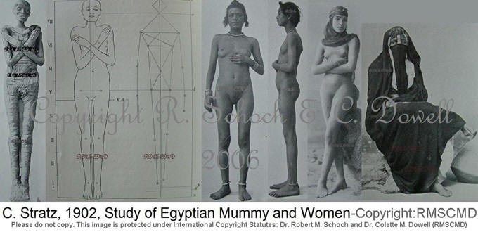Image of Dr. C. Stratz Egyptian Mummy Upper Egyptian and Lower Egyptian Female